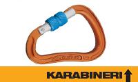 KARABINERI-LINK